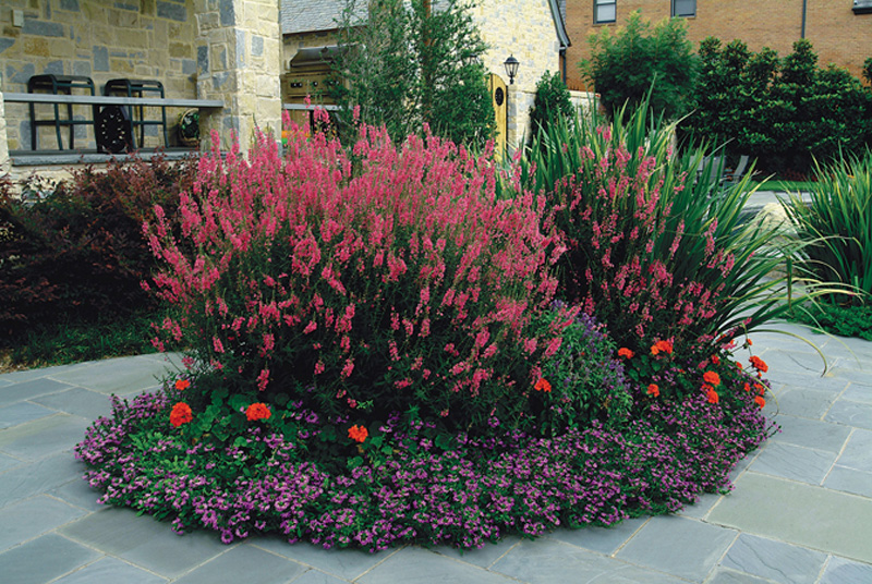 18 stunning round flower bed ideas lentine marine 13649 for Round flower garden designs
