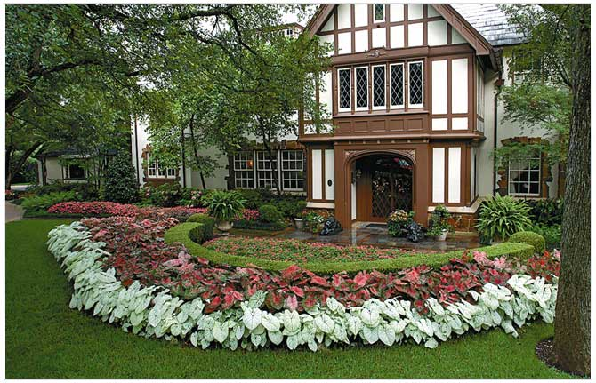 Bonick landscaping dallas landscape design pools and for Residential landscaping ideas