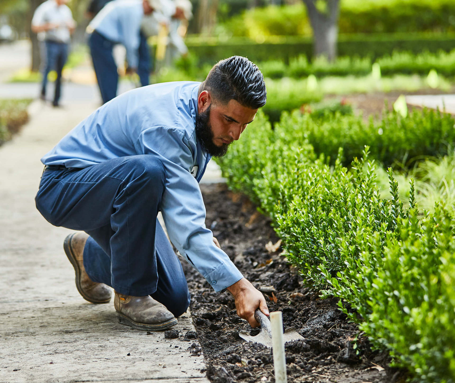Bonick Landscaping The Down & Dirty of Plant Health Care