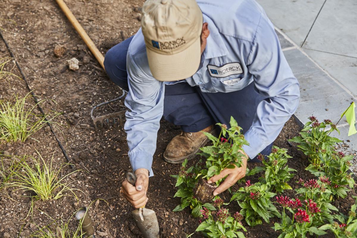 Bonick Landscaping Landscape Spring Cleaning Checklist