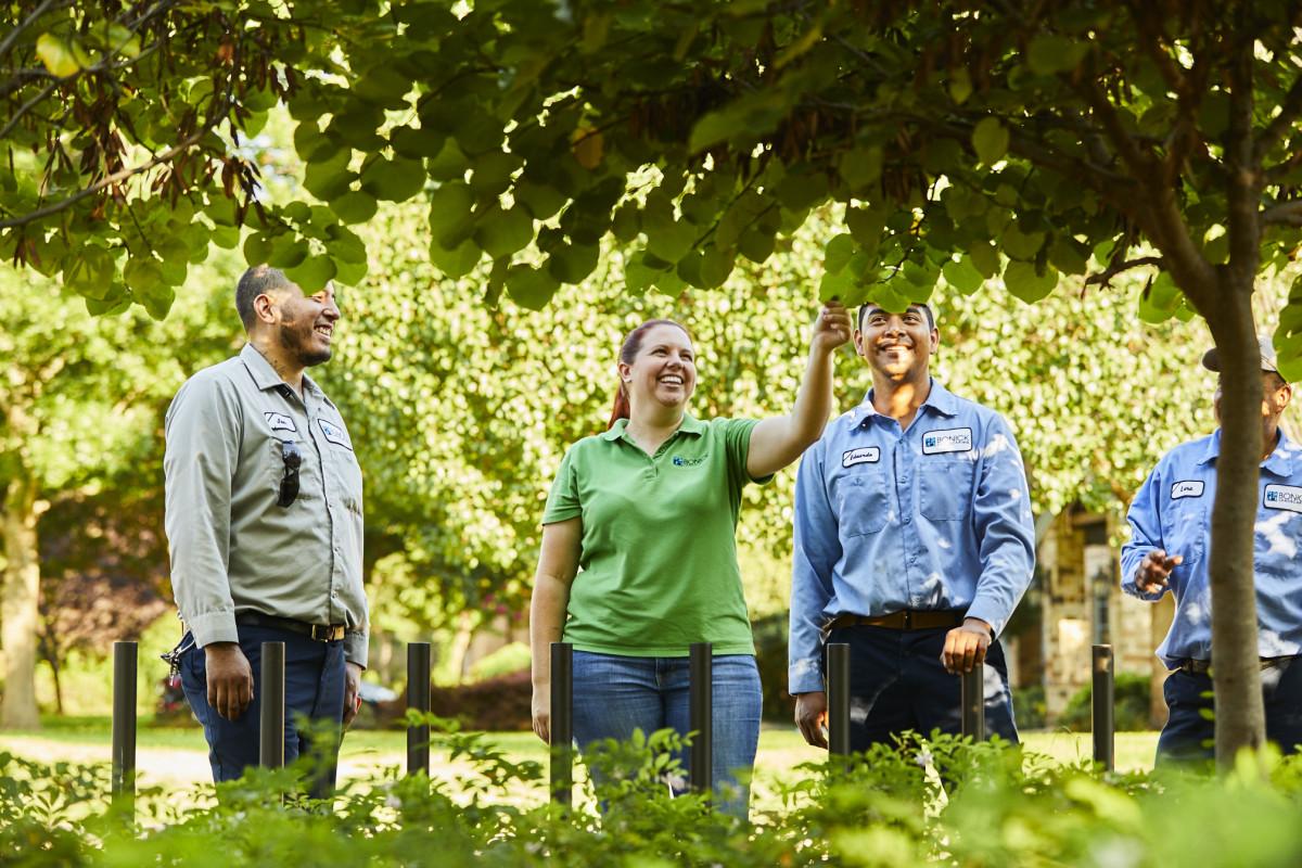 Bonick Landscaping Meet Megan Carpenter, Dallas Garden Manager
