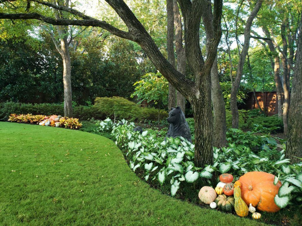 Bonick Landscaping Meet Renaissance Man & Garden Manager, Joe Horton