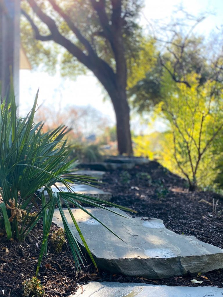 Bonick Landscaping Linear Perspectives: An Inside Look at Our Landscape Architects & Designers